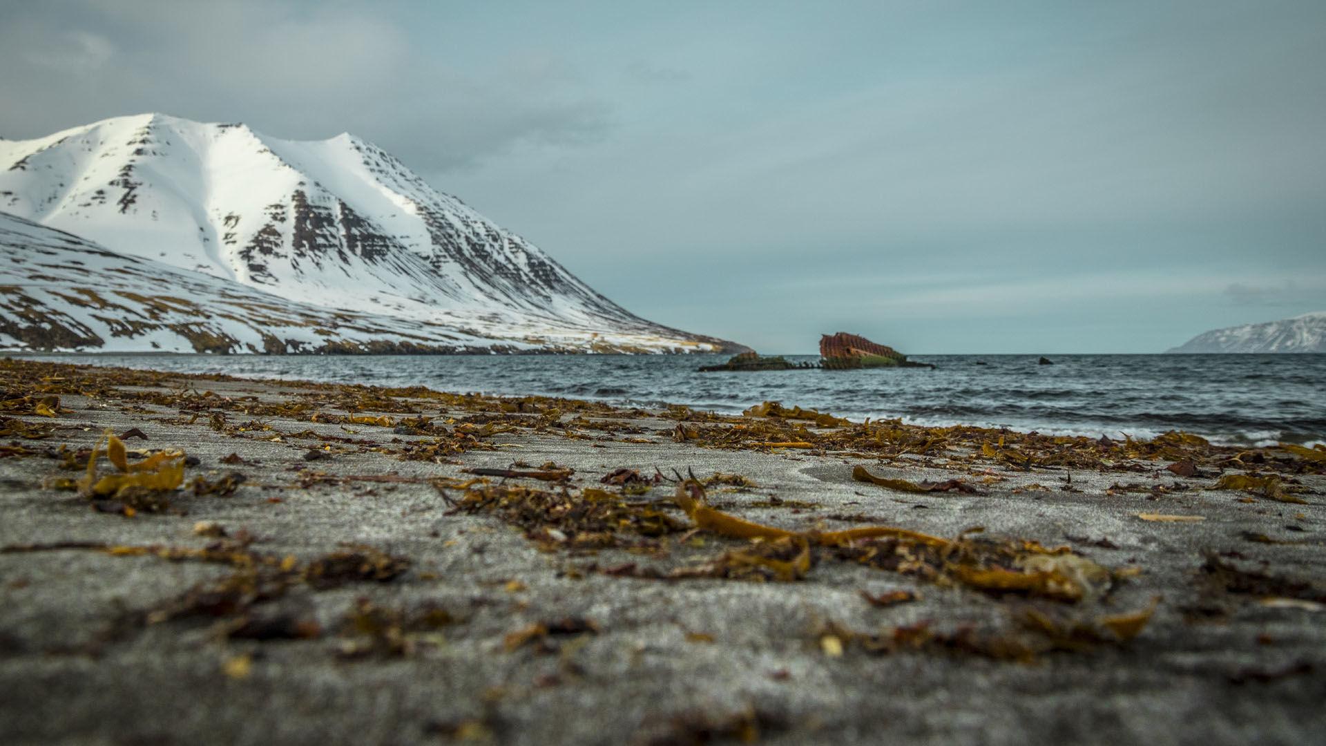 Strand In Oelafsfjordur Mit Blick Auf Die Skitouren Gipfel